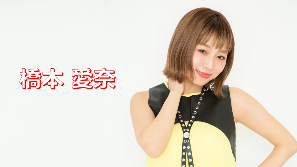 hashimoto2017_main